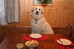 may I have the menu?