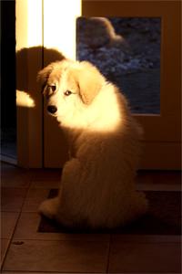 May I go outside?