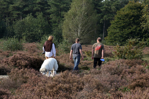 Walking on the moor with dad, Jukka and Pekka.