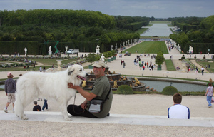 At the castle of Versailles