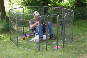With dad in the puppy pen